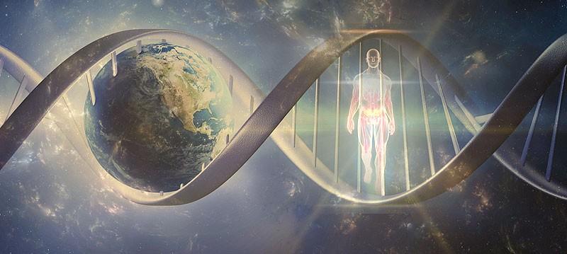 L'immortalità umana: tra la serie tv Forever e la mutazione A1 Milano