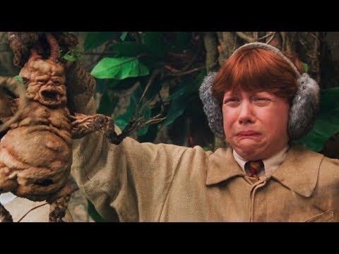 Mandragola, belladonna, erba del diavolo…le pozioni magiche in Harry Potter e nella vita reale