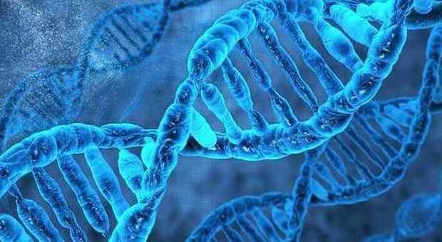 Scoperto un uomo con due DNA: un curioso caso come Benjamin Button