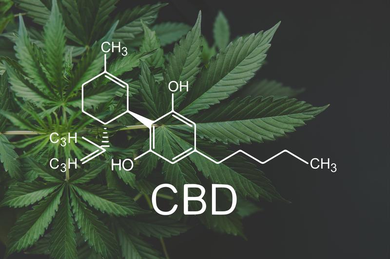 """Cosa penserebbe Platone della legalizzazione delle droghe leggere? La risposta ne """"Le Leggi"""""""