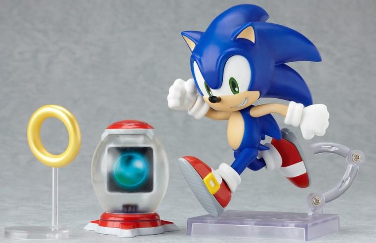 """Il gene Sonic Hedgehog responsabile dello sviluppo della mano: analisi del gene """"porcospino blu"""""""