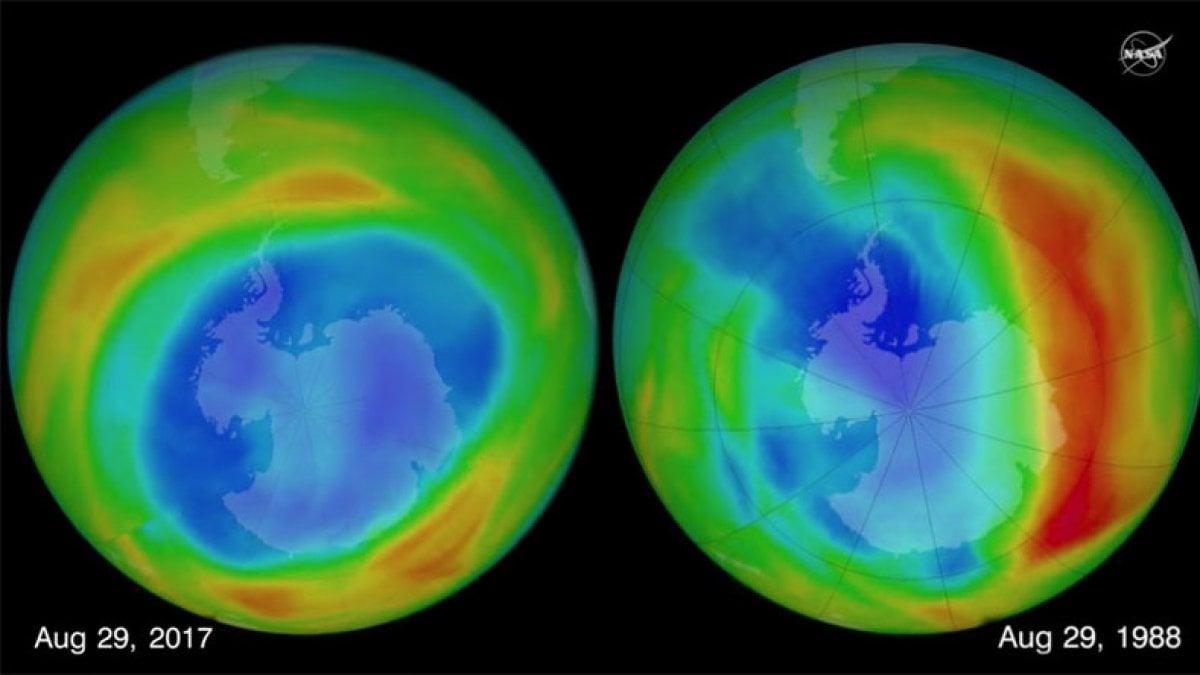 Il buco dell'ozono potrebbe essere il fattore scatenante di una nuova estinzione