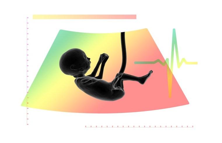 Creazione di embrioni umani in laboratorio. Quanto siamo vicini alla produzione di feti umani artificiali?