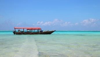 Escursione Safari Blue Zanzibar