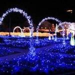 4 millones de LEDs en parque japonés