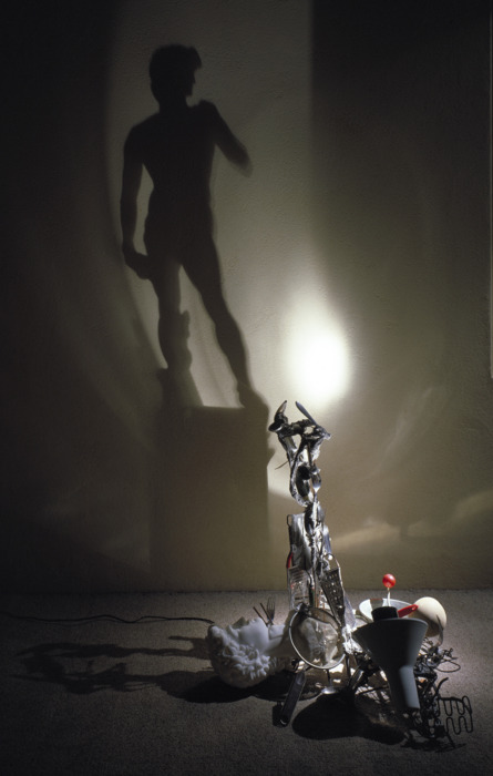 david-shadow
