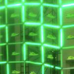 Obras de luz en Zona MACO 2013