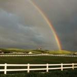 El arcoiris ¿un código para descifrar el universo?