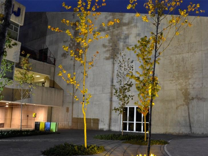 Para el cierre del curso, los alumnos iluminaron el patio central del Edificio de Posgrado de la UNAM. Foto: Jimena Audefroy