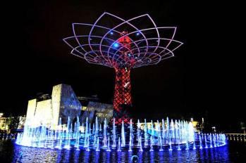 Foto 1 árbol milán