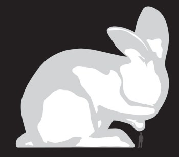 Amanda Parer conejo xxl