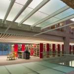 La Biblioteca del Colegio de México, una linterna en el bosque