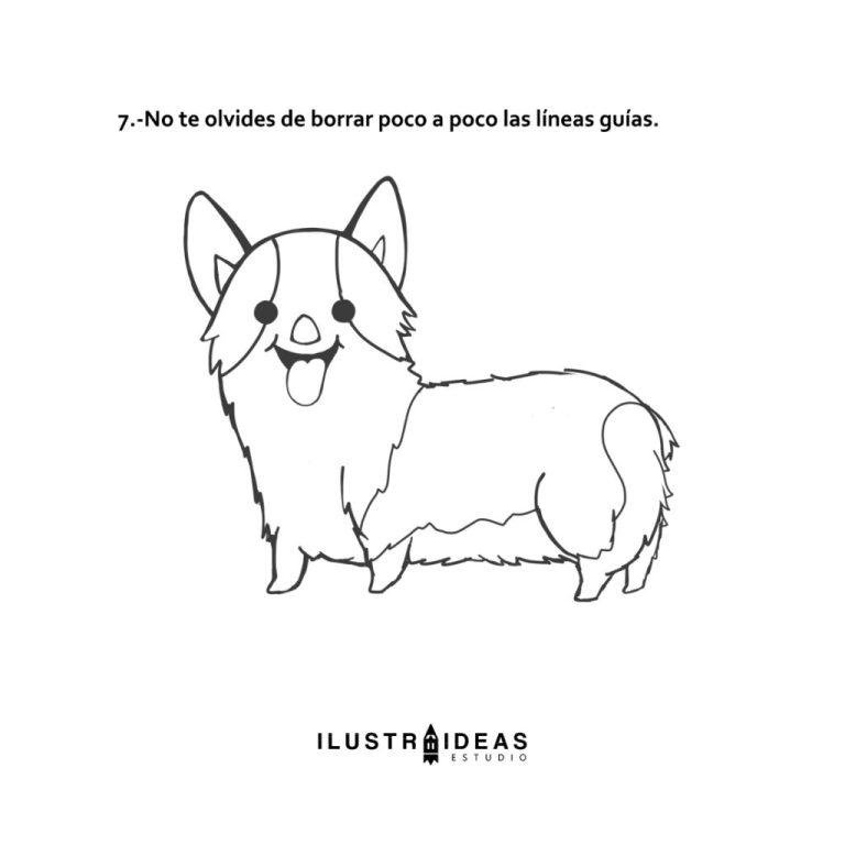 Cómo dibujar un corgi potter