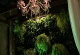 VILA DOMENICA – Verde Casual