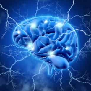 cervello epilessia