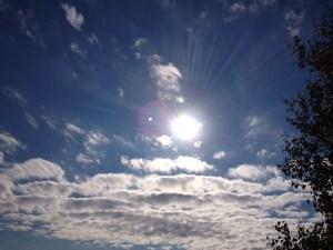 Zen life alternative living marie-Eve Boudreault author writer blog