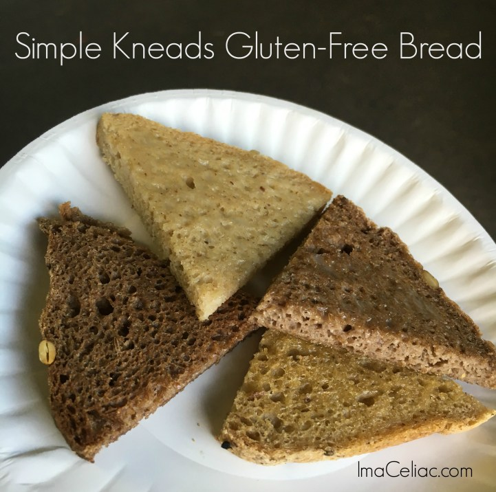Simple Kneads Gluten Free Sourdough