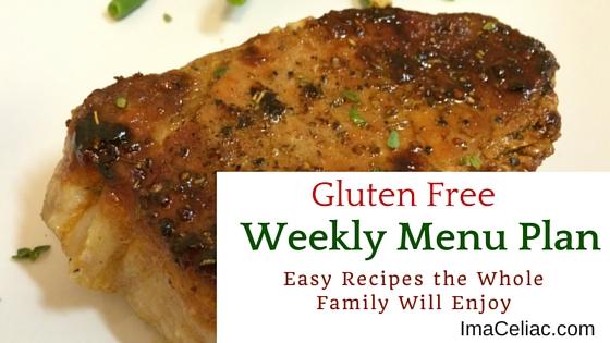 Weekly Gluten Free Menu Planning December 14 2015