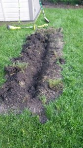 One of the trenches just before planting the bare root canes.