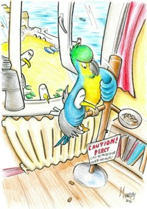 Percy the Parrot and his nuts