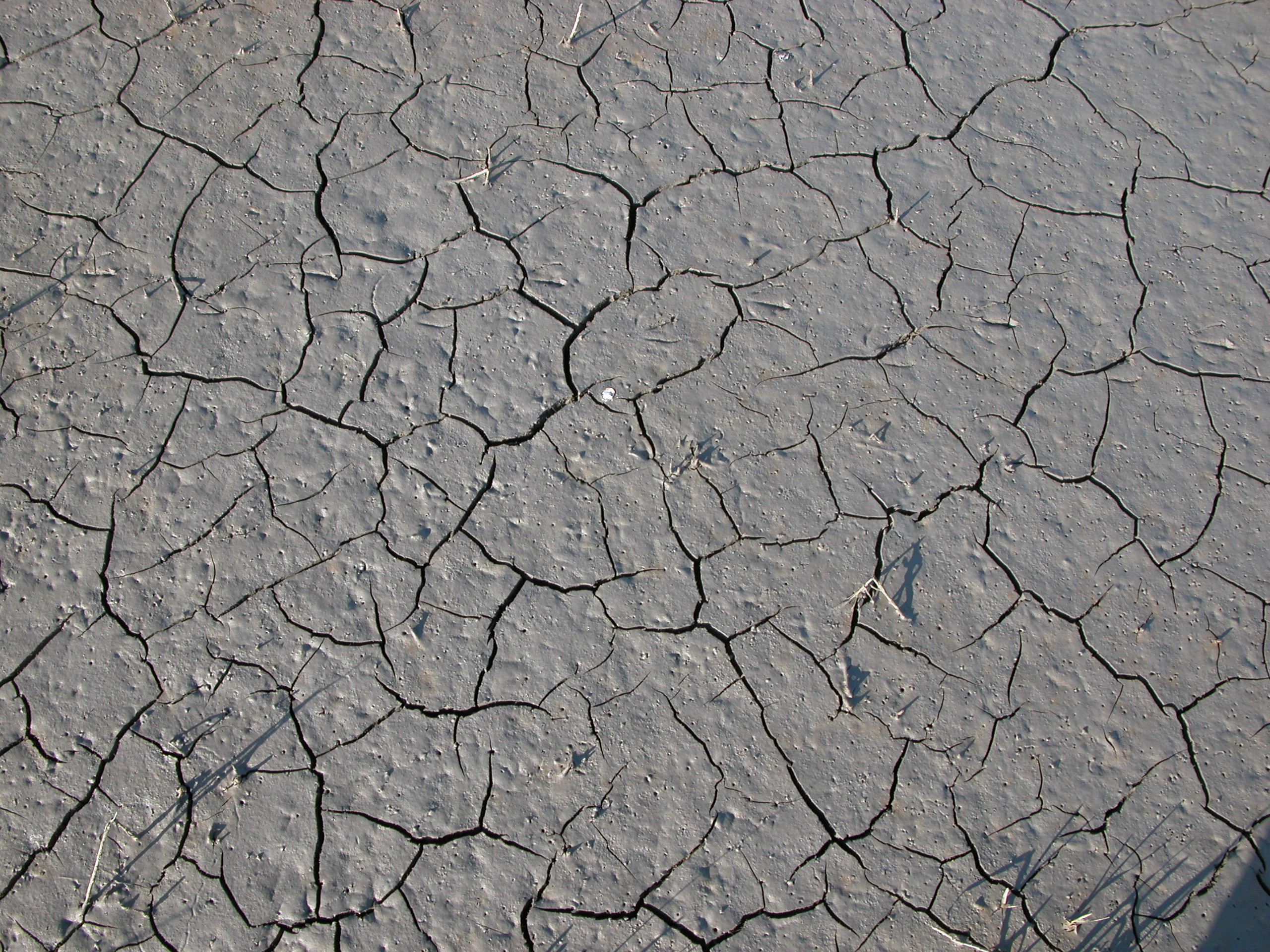 Image After Photo Cracked Dry Dried Earth Grey Soil