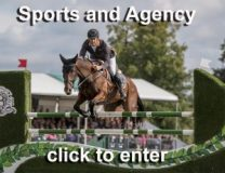 Sports and agency photographer