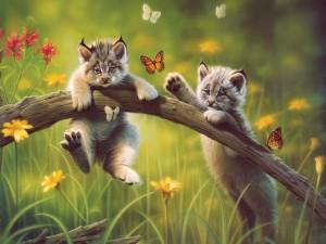imagenes de animales enamorados-6