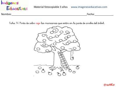 Fichas_Página_15