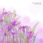 Imgenes primavera (45)