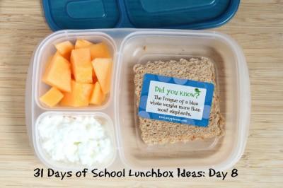 Almuerzos saludables para niñ@s (26)