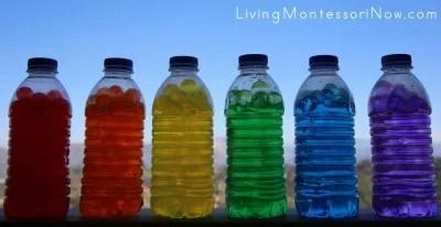 Botellas sensoriales (27)