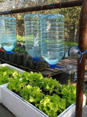 Huerto escolar botellas plastico y otros materiales reciclados (8)