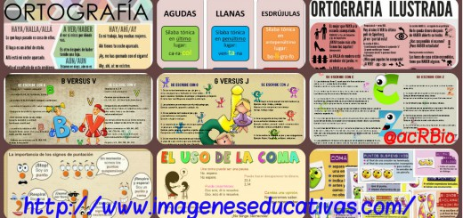 ortografía Collage