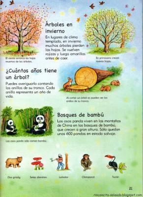 Atlas Infantil en Imágenes (22)