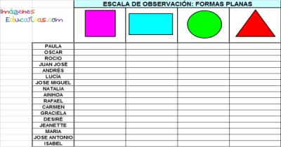 Registro de Observación1