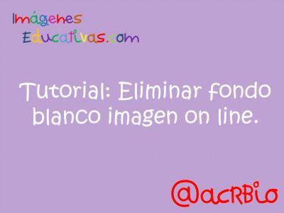 Tutorial Eliminar fondo blanco imagen on line (1)