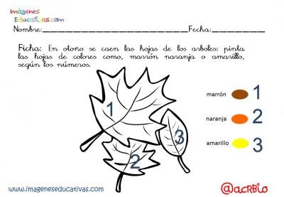 Fichas otoño infantil y primaria (2)