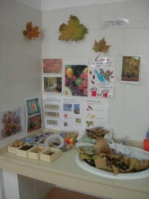 Rincón del otoño(3)