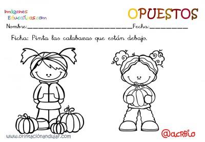 Cuaderno otoño opuestos IE (18)