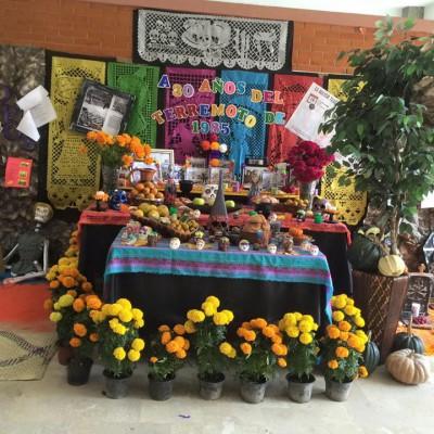 Decoraciones Día de los Muertos (50)