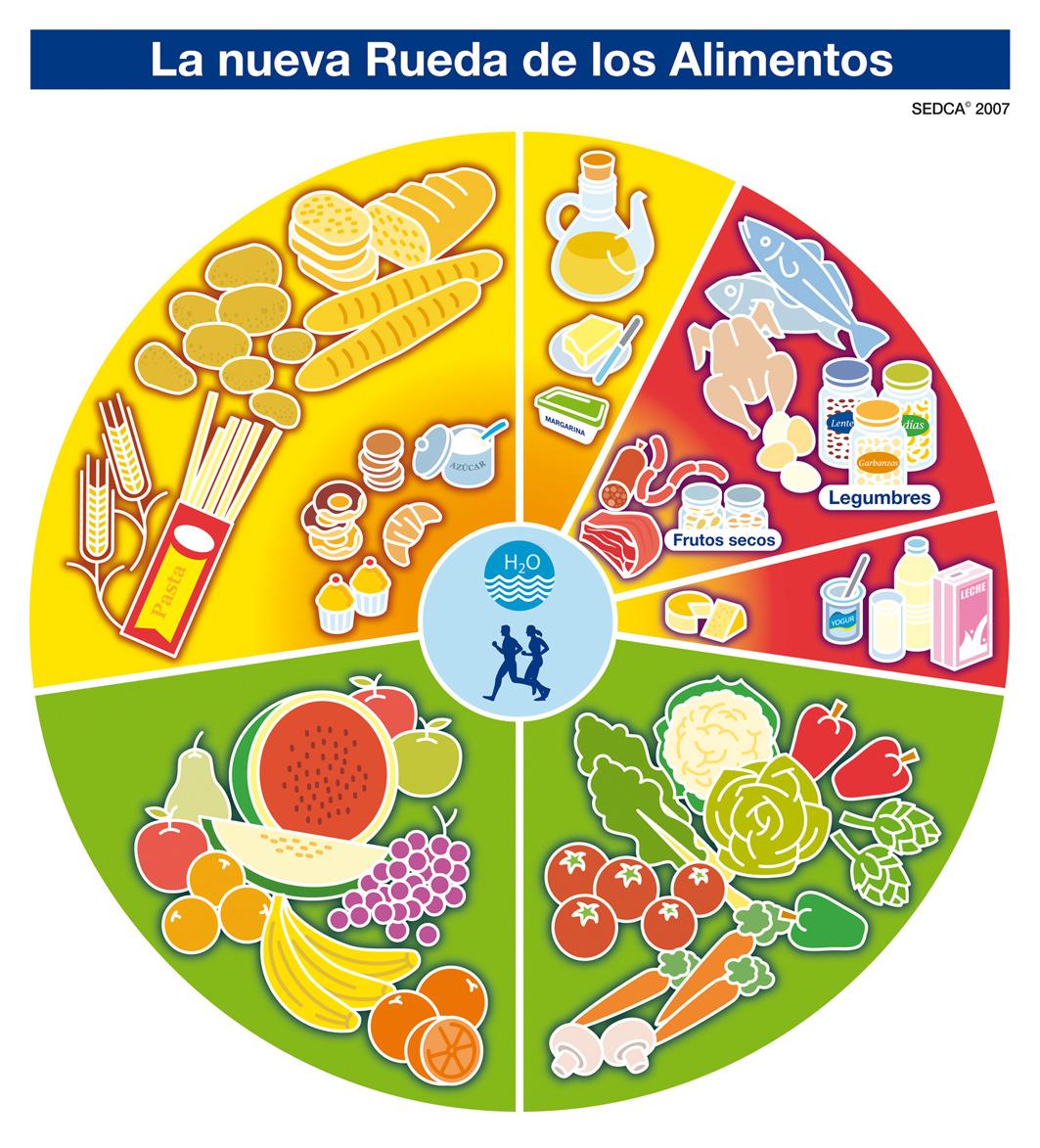 Rueda de los alimentos - Imagenes Educativas