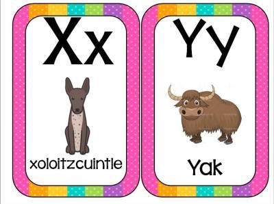 Abecedario Animales formato tarjetas (13)