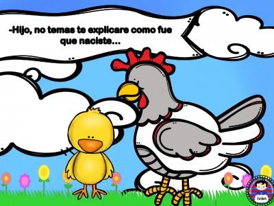 El-pollito-Pipo.-012