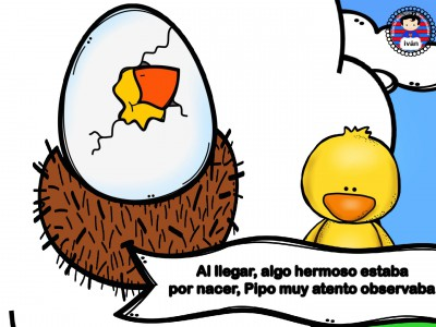 El-pollito-Pipo.-020