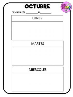 SEMÁFOROS DE CONDUCTA (13)