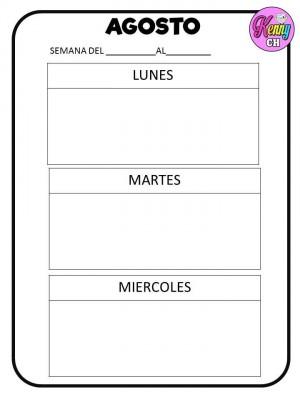 SEMÁFOROS DE CONDUCTA (7)
