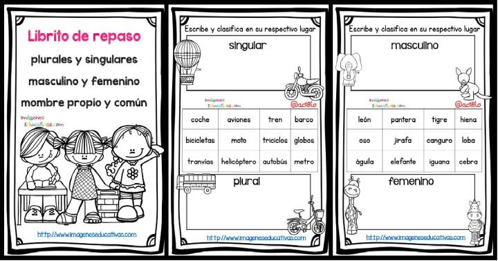 Fichas de repaso singular plural masculino y femenino PORTADA