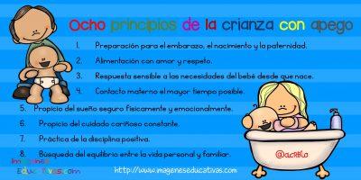 Ocho principios de la crianza con apego (1)