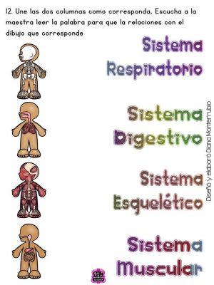 Fichas examen dificultad MEDIA infantil y preescolar (12)