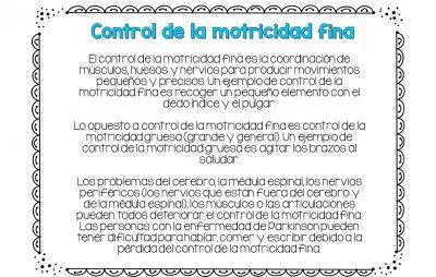 Cuaderno Motricidad Fina Aldo Pruneda (2)